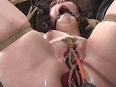248 legs porn vids